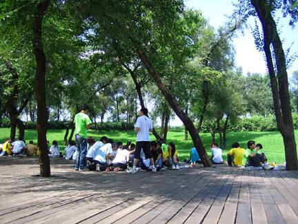 Park-deck