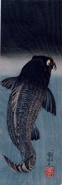 Blackcarputagawa_2